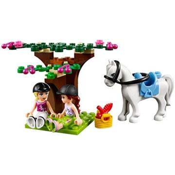 Lego Friends 41039 - Großer Bauernhof - 6